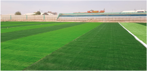 Alamzey Stadium